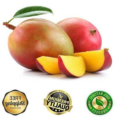 Raw Butter Pure Organic For Body Bulk